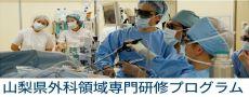 外科領域専門研修プログラム